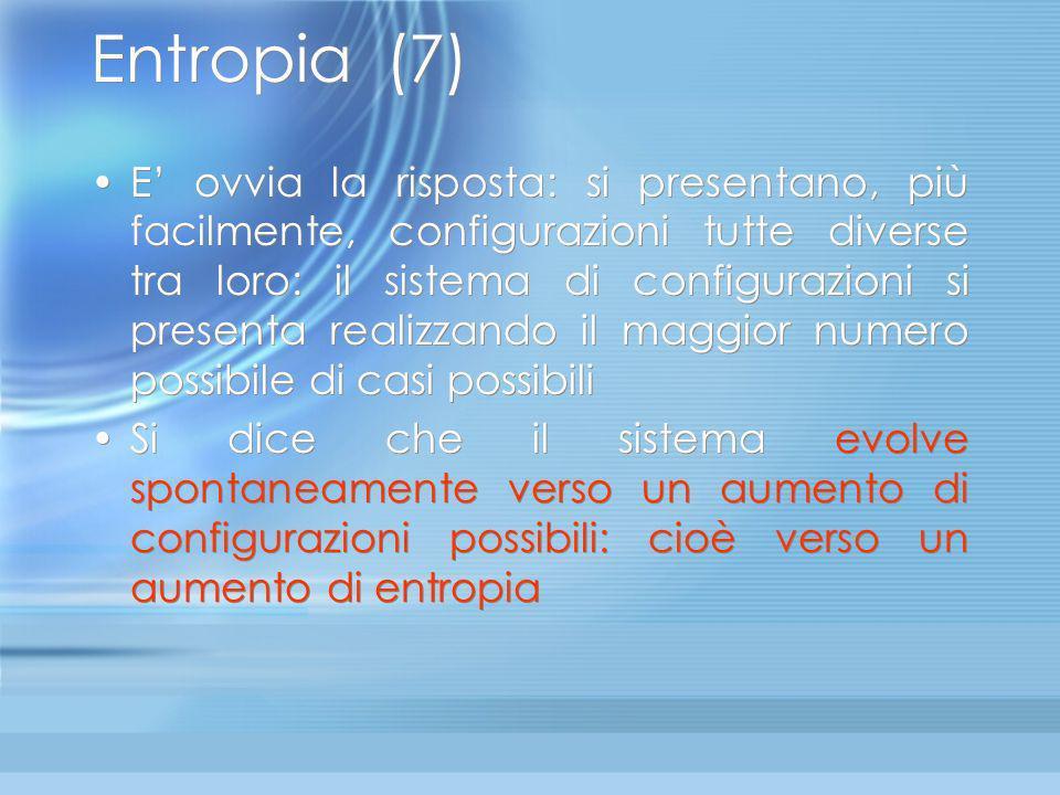 Entropia (7)
