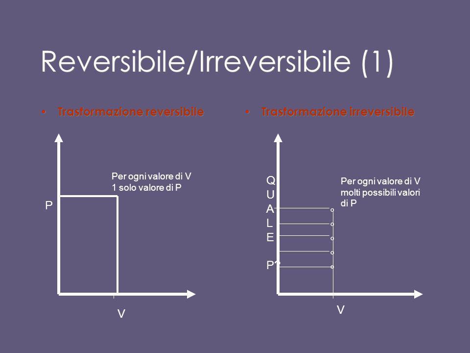 Reversibile/Irreversibile (1)