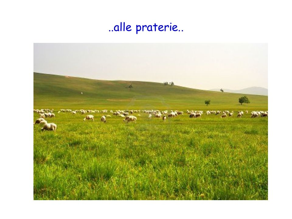 ..alle praterie..