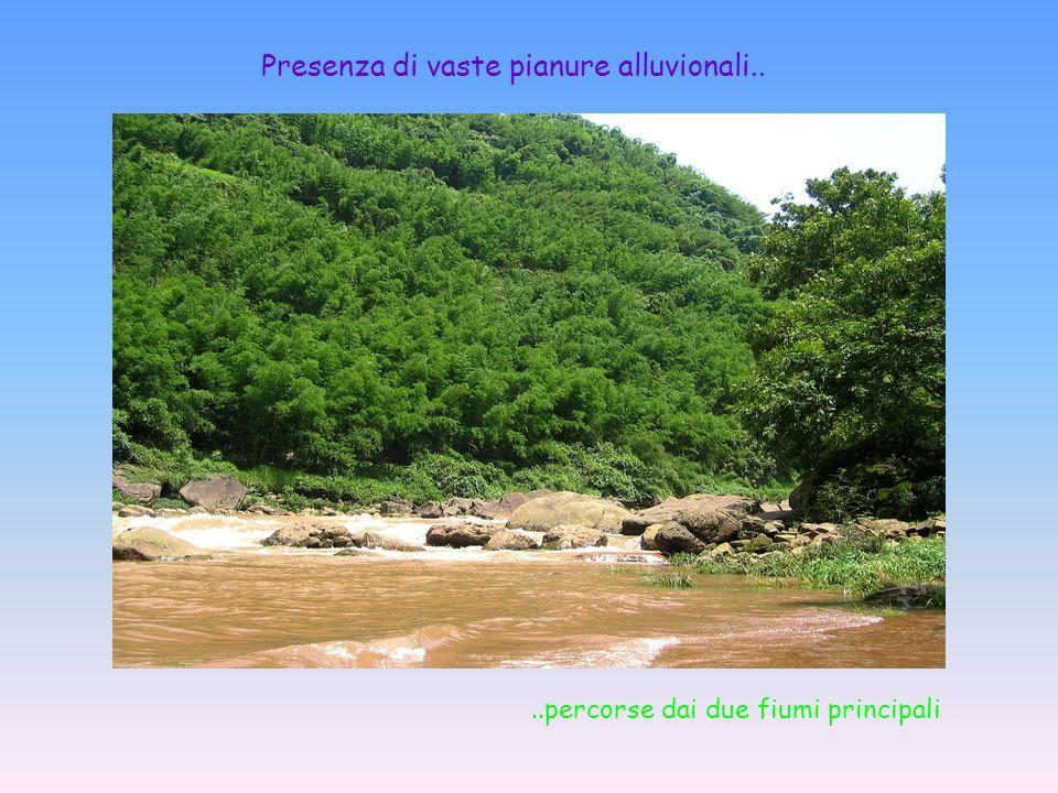 Presenza di vaste pianure alluvionali..
