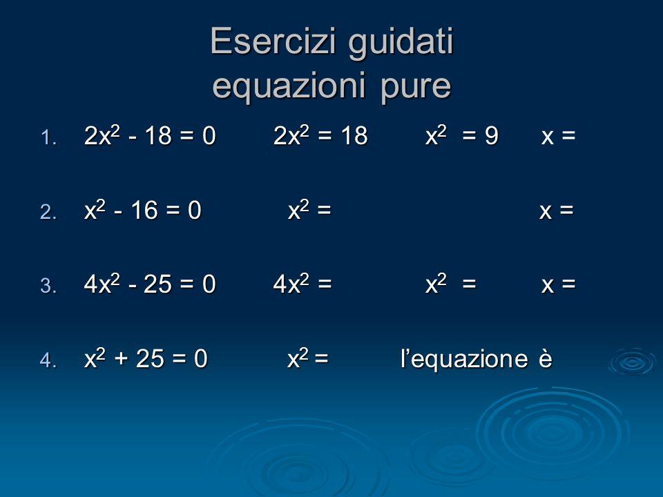 Esercizi guidati equazioni pure