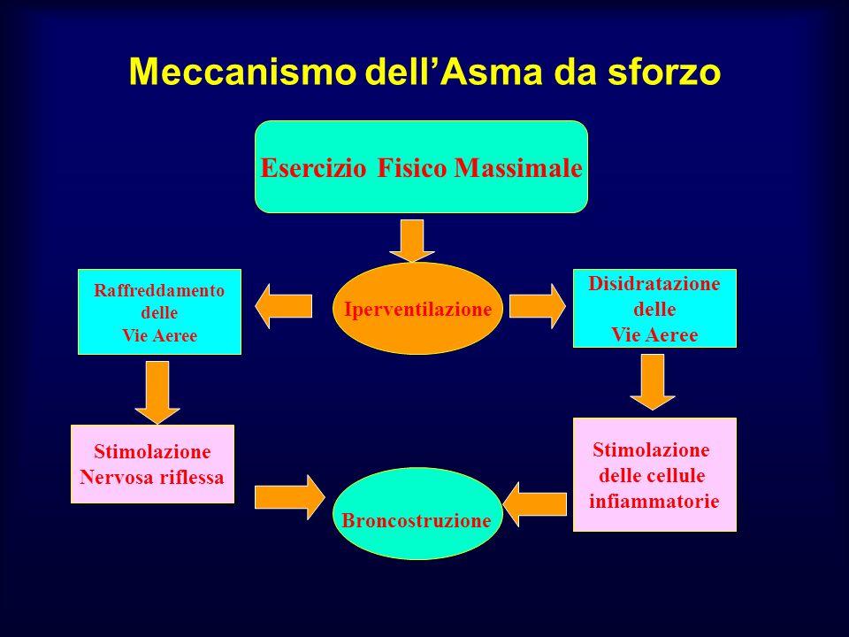 Meccanismo dell'Asma da sforzo