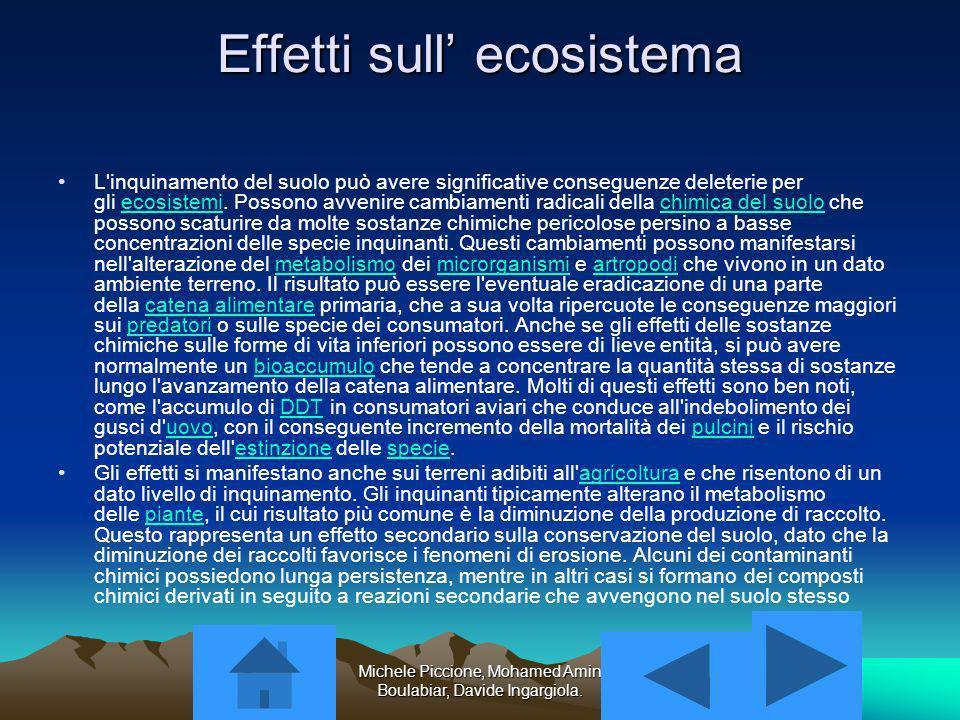 Effetti sull' ecosistema