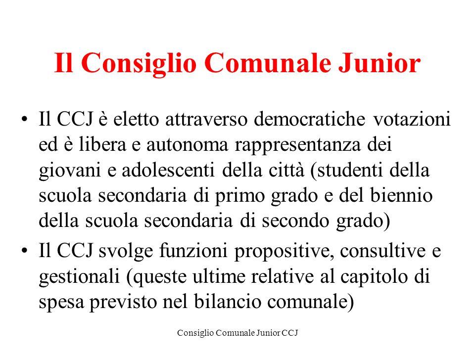 Il Consiglio Comunale Junior