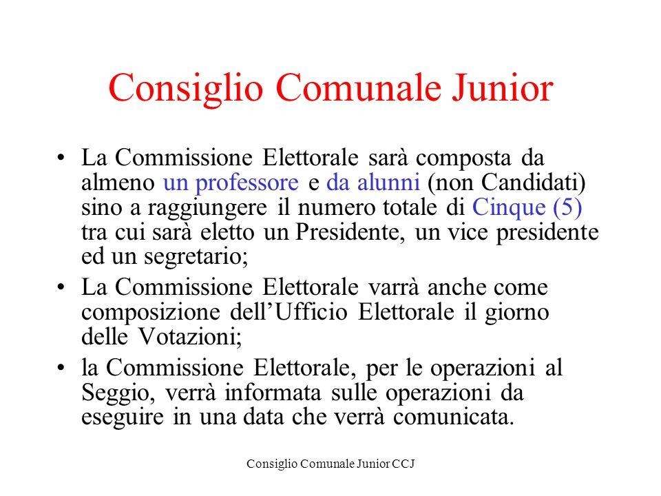 Consiglio Comunale Junior