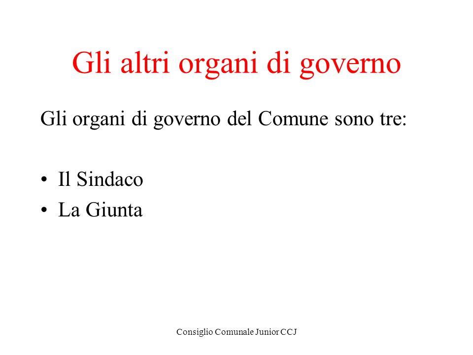 Gli altri organi di governo