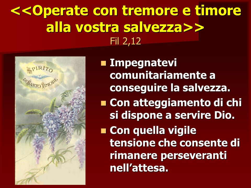 <<Operate con tremore e timore alla vostra salvezza>> Fil 2,12
