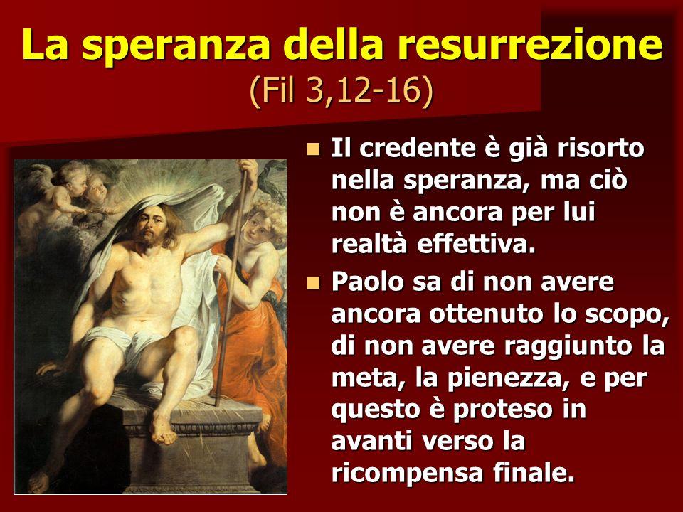 La speranza della resurrezione (Fil 3,12-16)