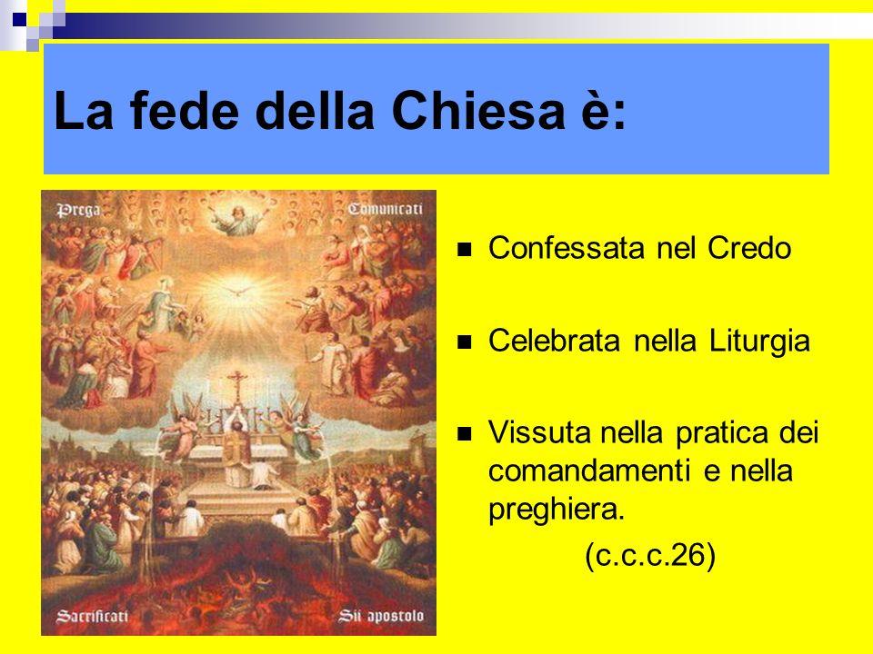 La fede della Chiesa è: Confessata nel Credo Celebrata nella Liturgia