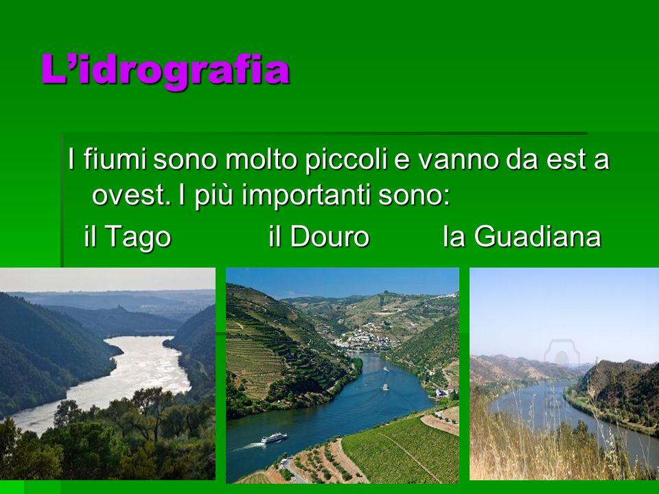 L'idrografia I fiumi sono molto piccoli e vanno da est a ovest.