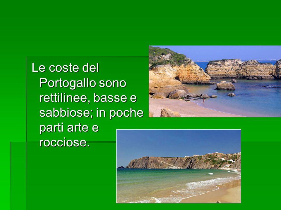 Le coste del Portogallo sono rettilinee, basse e sabbiose; in poche parti arte e rocciose.