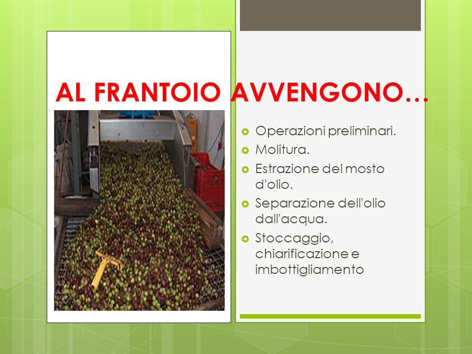 AL FRANTOIO AVVENGONO…