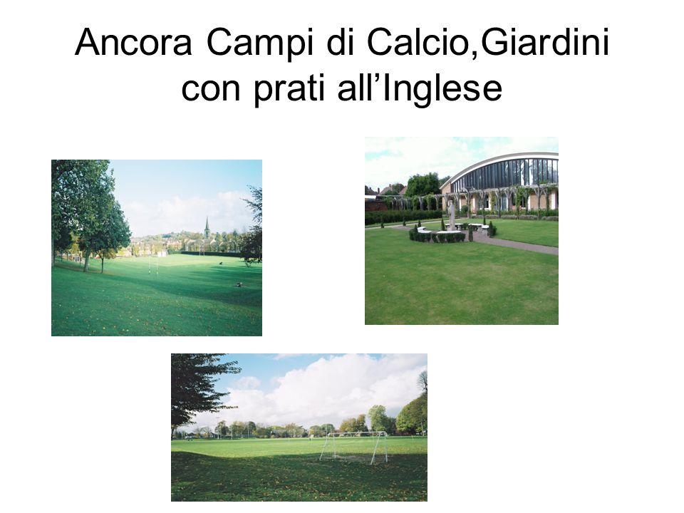 Ancora Campi di Calcio,Giardini con prati all'Inglese