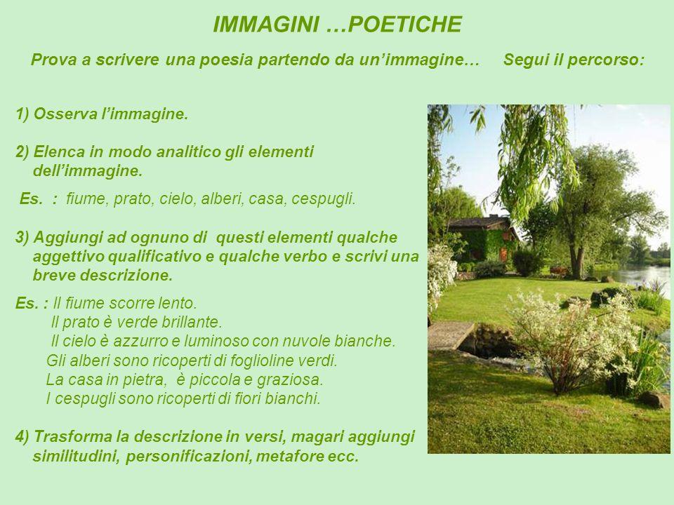 IMMAGINI …POETICHE Prova a scrivere una poesia partendo da un'immagine… Segui il percorso: 1) Osserva l'immagine.