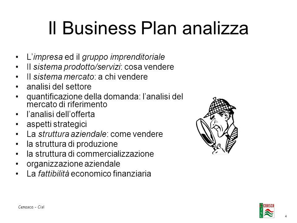 Il Business Plan analizza