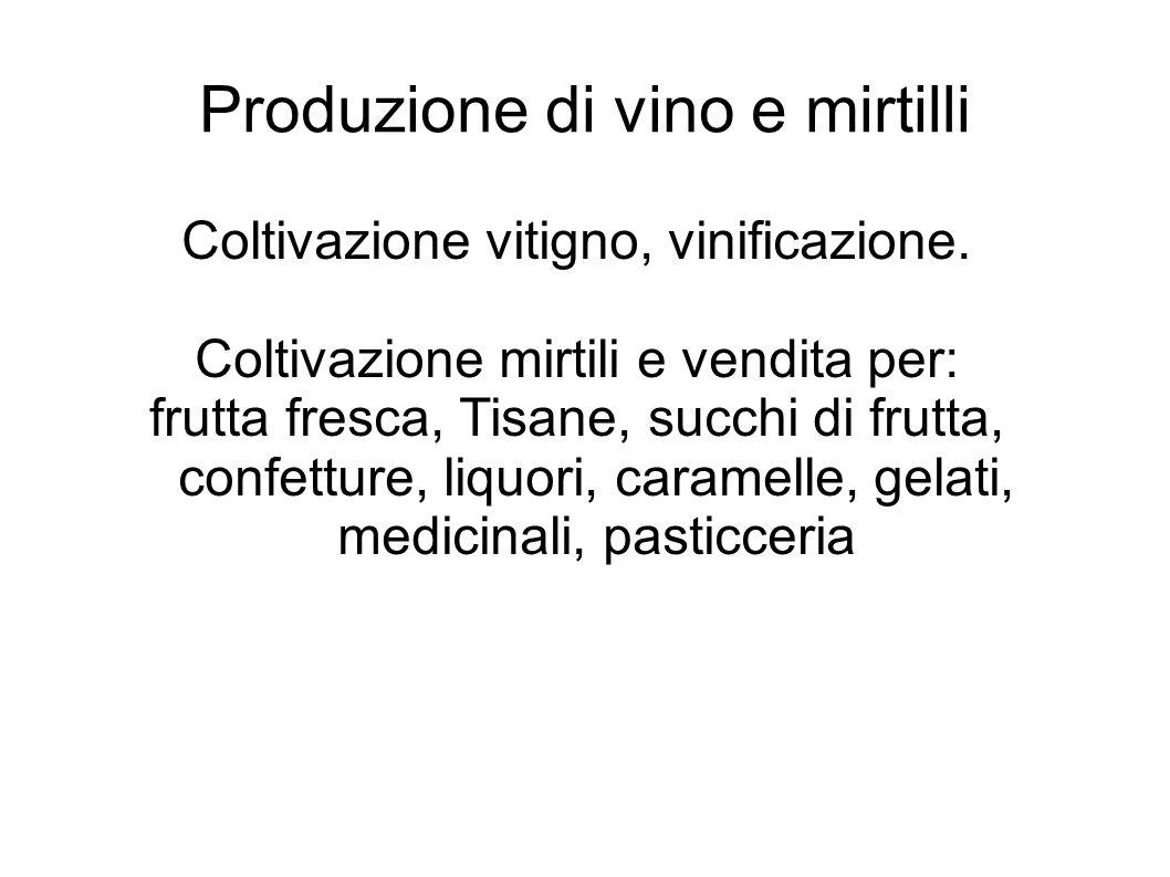 Produzione di vino e mirtilli