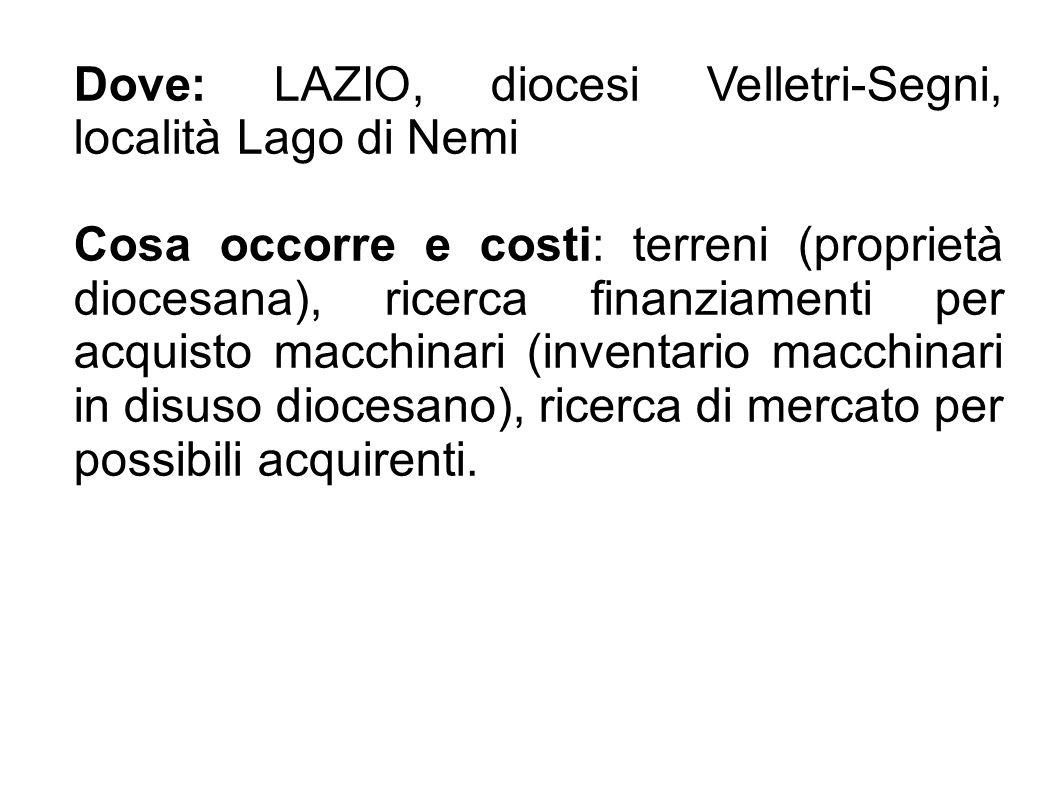 Dove: LAZIO, diocesi Velletri-Segni, località Lago di Nemi