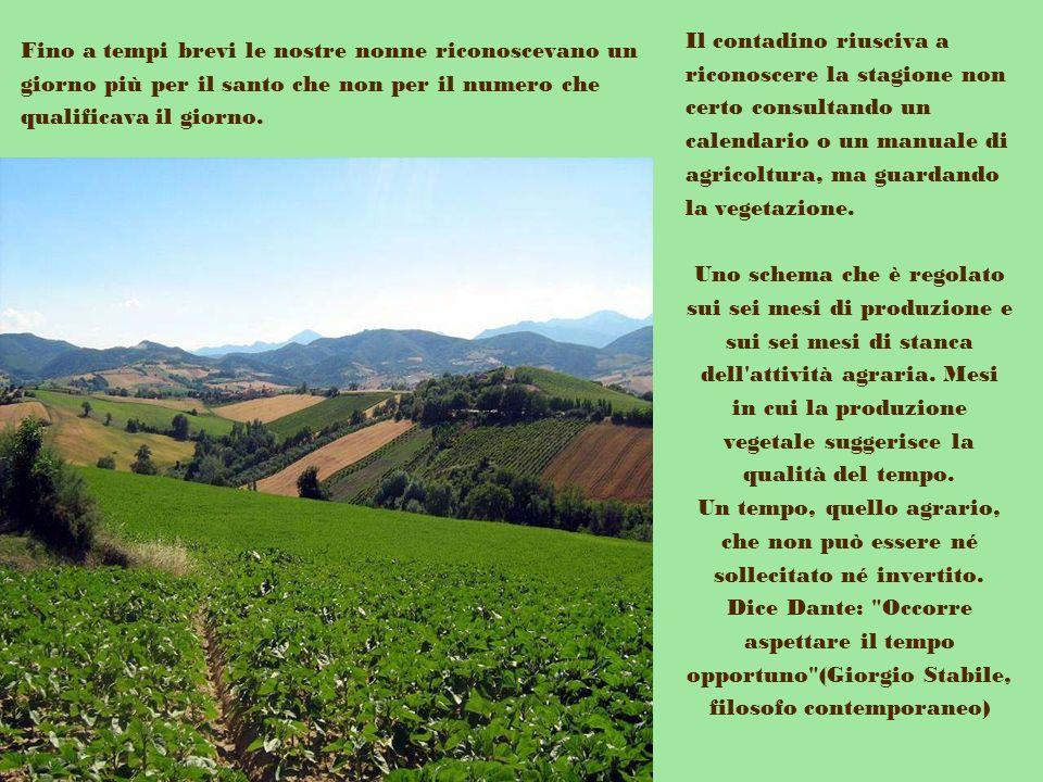 Il contadino riusciva a riconoscere la stagione non certo consultando un calendario o un manuale di agricoltura, ma guardando la vegetazione.
