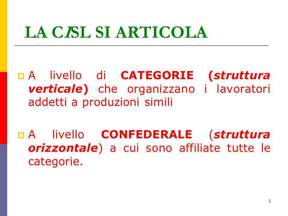 LA CISL SI ARTICOLA A livello di CATEGORIE (struttura verticale) che organizzano i lavoratori addetti a produzioni simili.