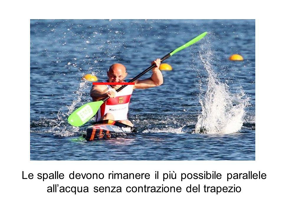 Le spalle devono rimanere il più possibile parallele all'acqua senza contrazione del trapezio