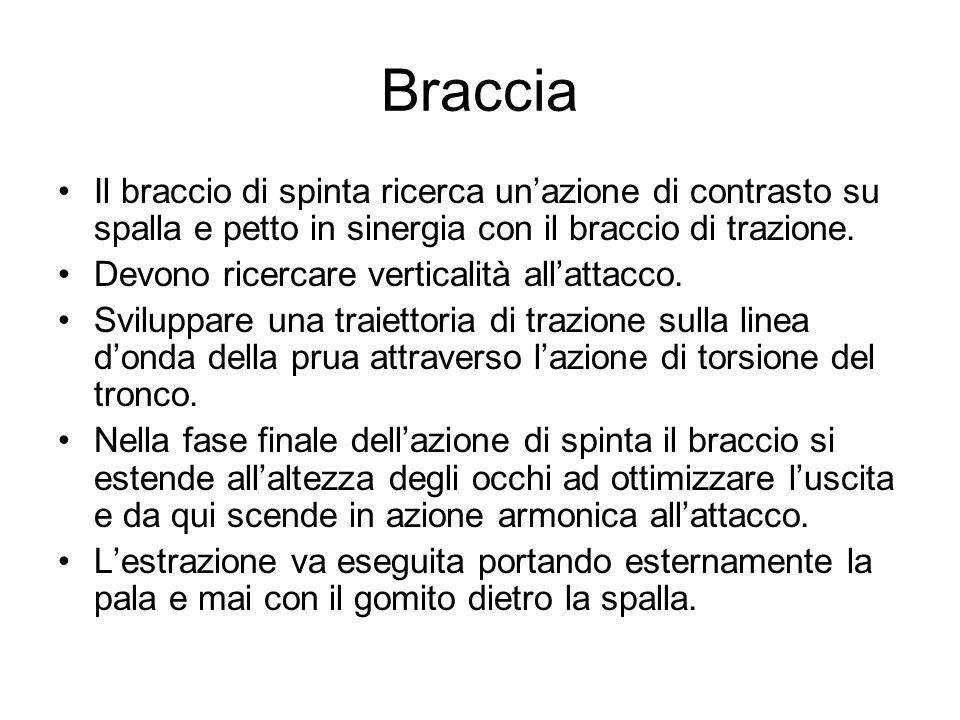 Braccia Il braccio di spinta ricerca un'azione di contrasto su spalla e petto in sinergia con il braccio di trazione.