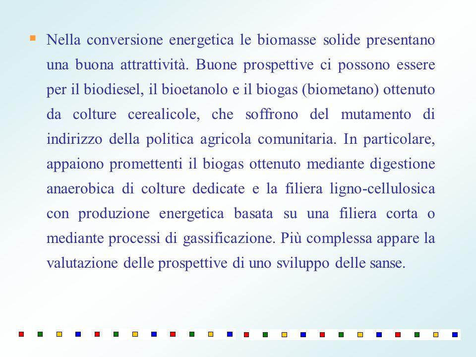 Nella conversione energetica le biomasse solide presentano una buona attrattività.