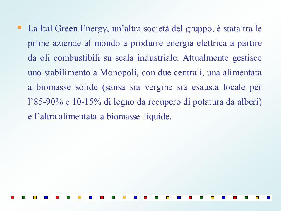 La Ital Green Energy, un'altra società del gruppo, è stata tra le prime aziende al mondo a produrre energia elettrica a partire da oli combustibili su scala industriale.