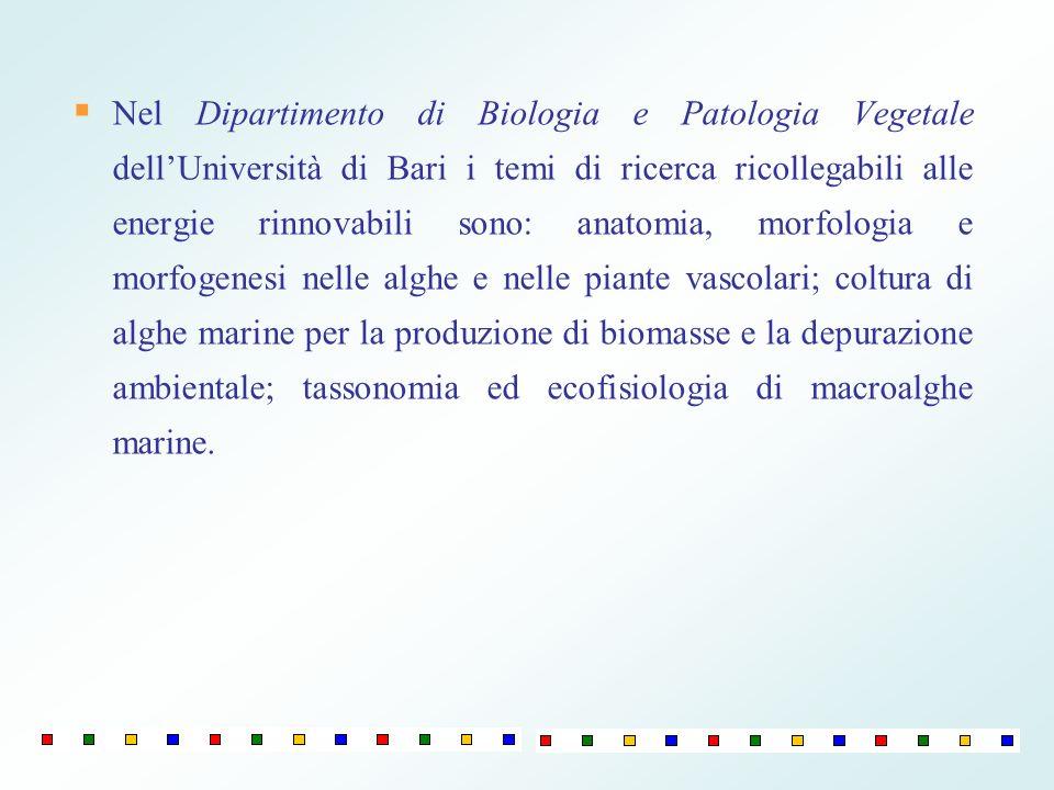 Nel Dipartimento di Biologia e Patologia Vegetale dell'Università di Bari i temi di ricerca ricollegabili alle energie rinnovabili sono: anatomia, morfologia e morfogenesi nelle alghe e nelle piante vascolari; coltura di alghe marine per la produzione di biomasse e la depurazione ambientale; tassonomia ed ecofisiologia di macroalghe marine.