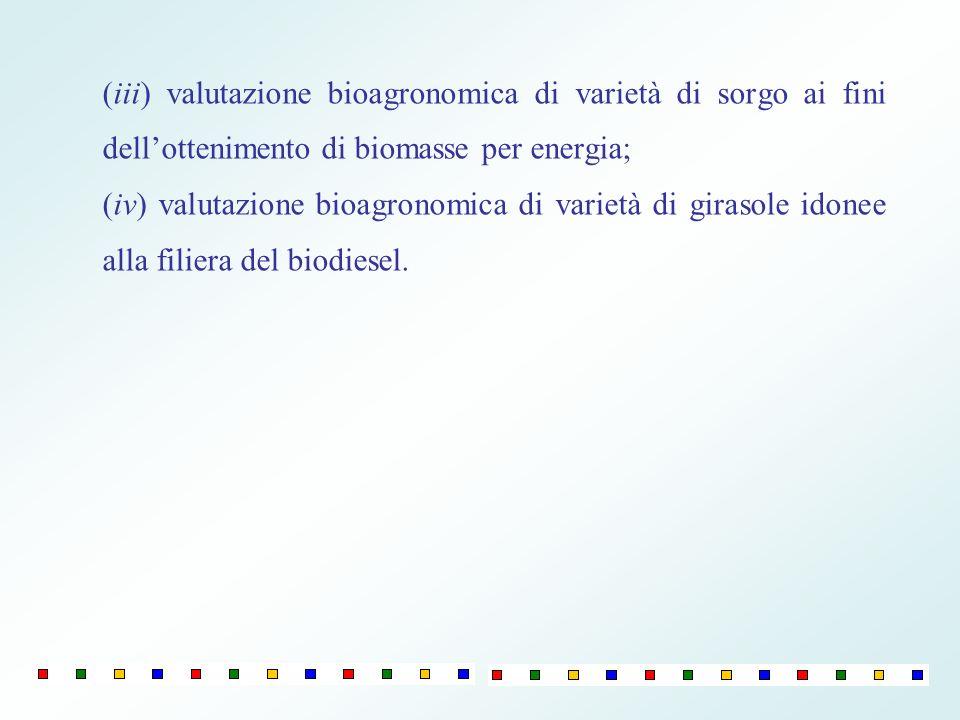 (iii) valutazione bioagronomica di varietà di sorgo ai fini dell'ottenimento di biomasse per energia;