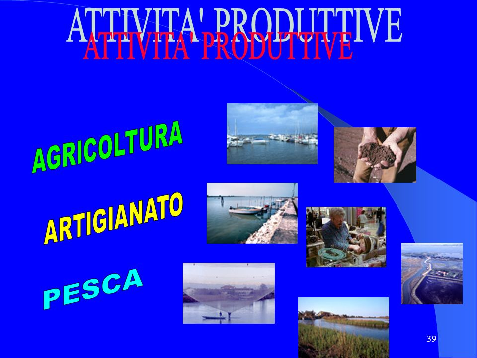 ATTIVITA PRODUTTIVE AGRICOLTURA ARTIGIANATO PESCA