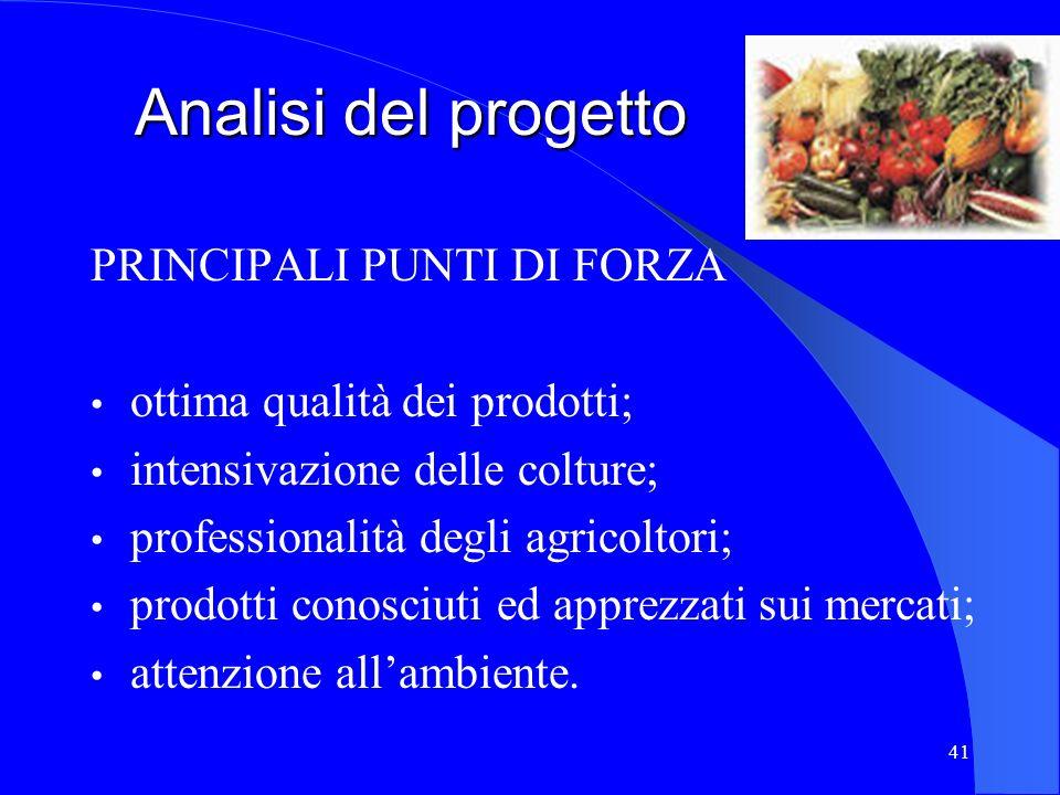 Analisi del progetto PRINCIPALI PUNTI DI FORZA
