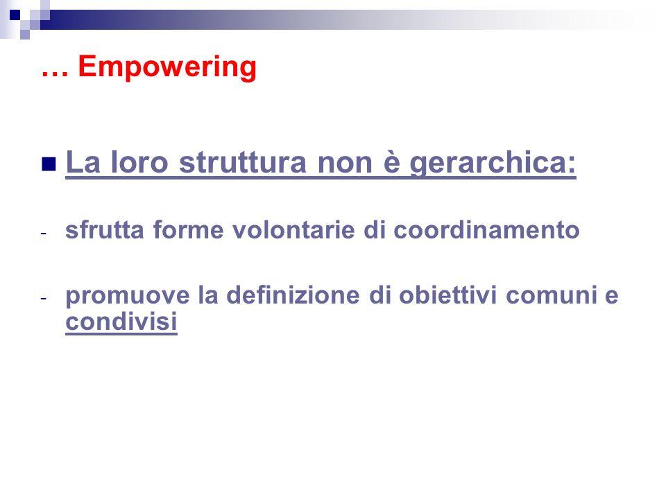 La loro struttura non è gerarchica: