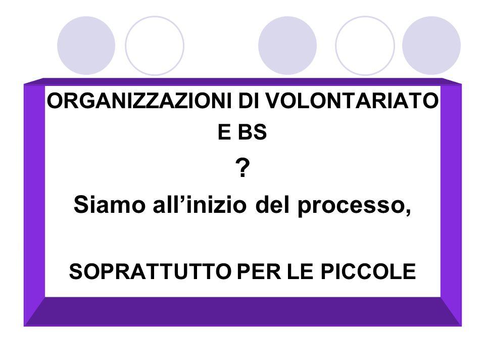 Siamo all'inizio del processo, ORGANIZZAZIONI DI VOLONTARIATO E BS
