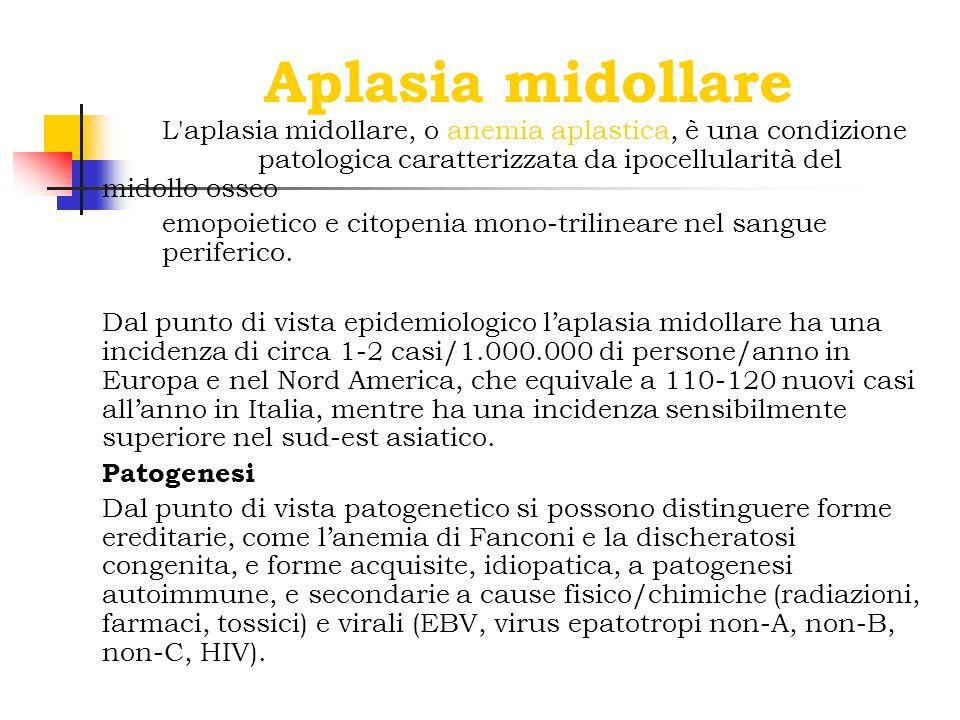 Aplasia midollare L aplasia midollare, o anemia aplastica, è una condizione patologica caratterizzata da ipocellularità del midollo osseo.