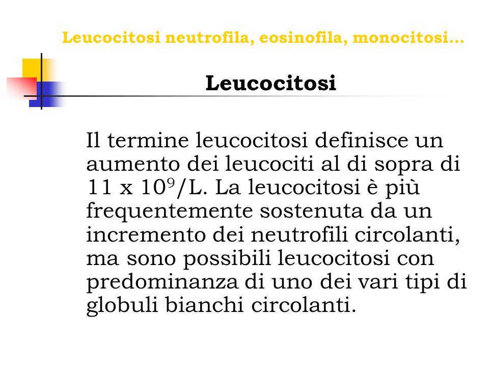 Leucocitosi neutrofila, eosinofila, monocitosi…