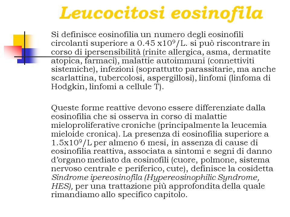 Leucocitosi eosinofila