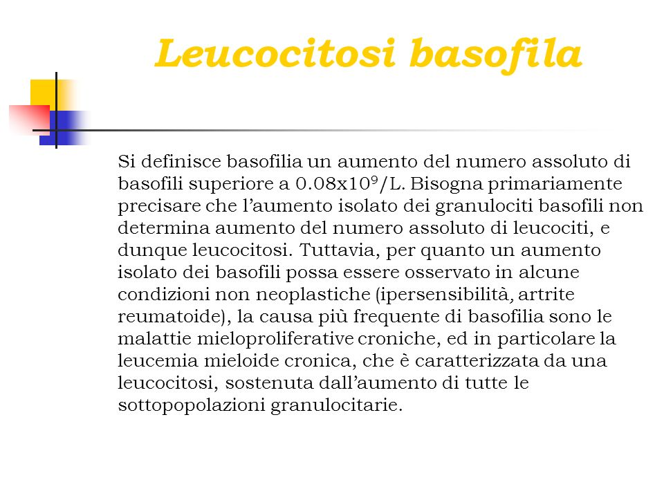 Leucocitosi basofila