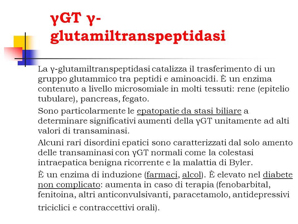 γGT γ-glutamiltranspeptidasi