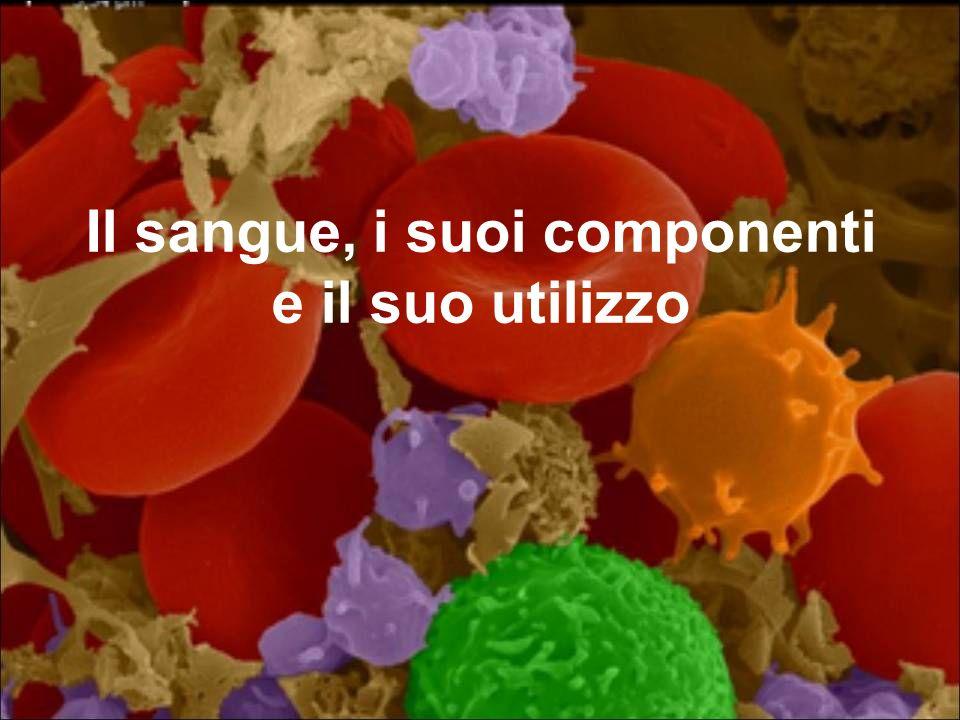 Il sangue, i suoi componenti e il suo utilizzo