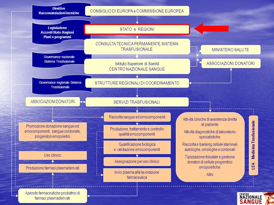 CONSIGLIO DI EUROPA e COMMISSIONE EUROPEA
