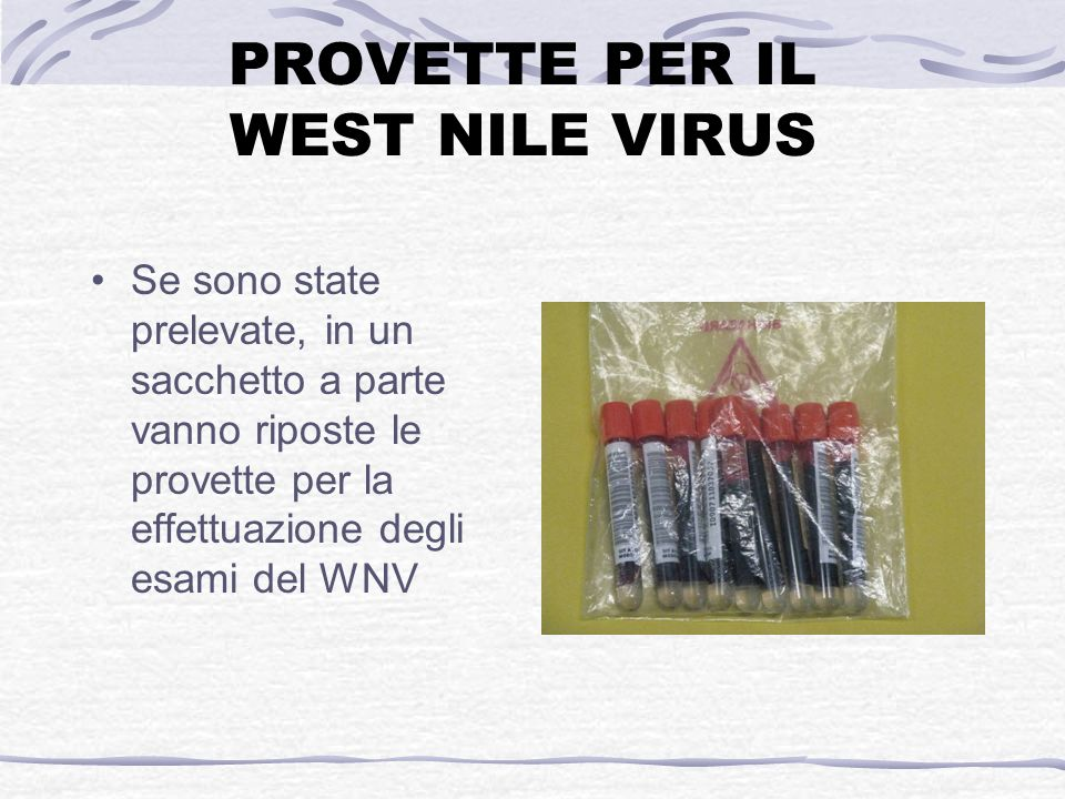 PROVETTE PER IL WEST NILE VIRUS