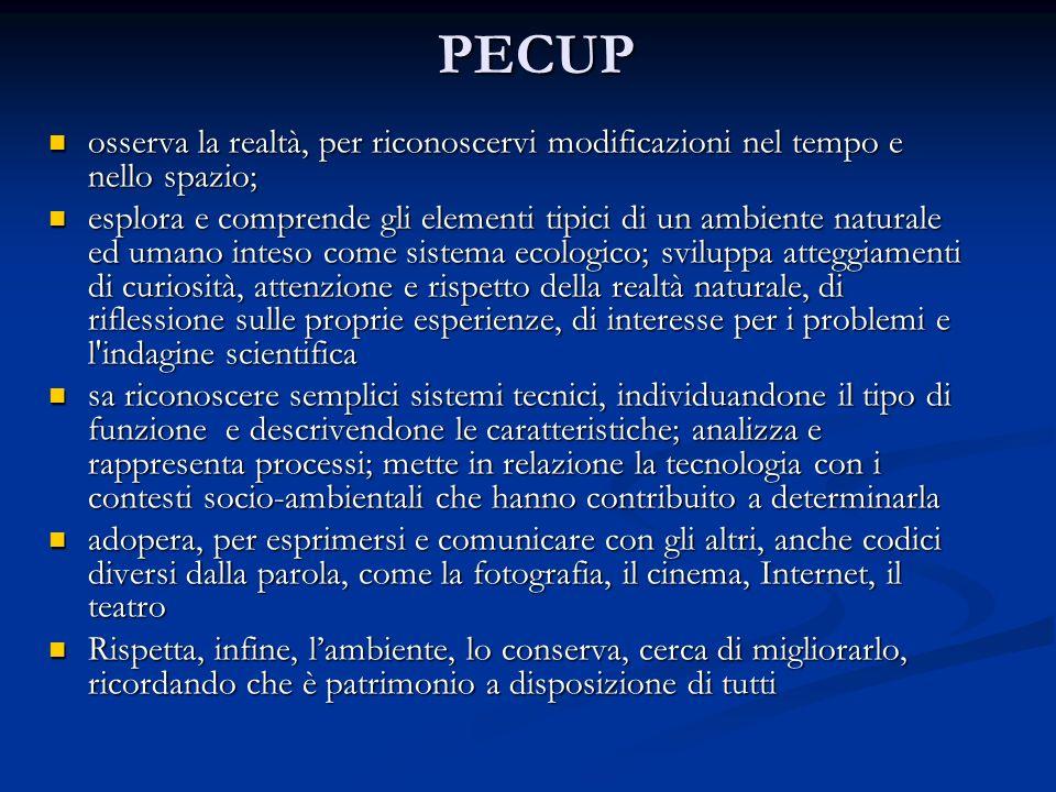 PECUP osserva la realtà, per riconoscervi modificazioni nel tempo e nello spazio;