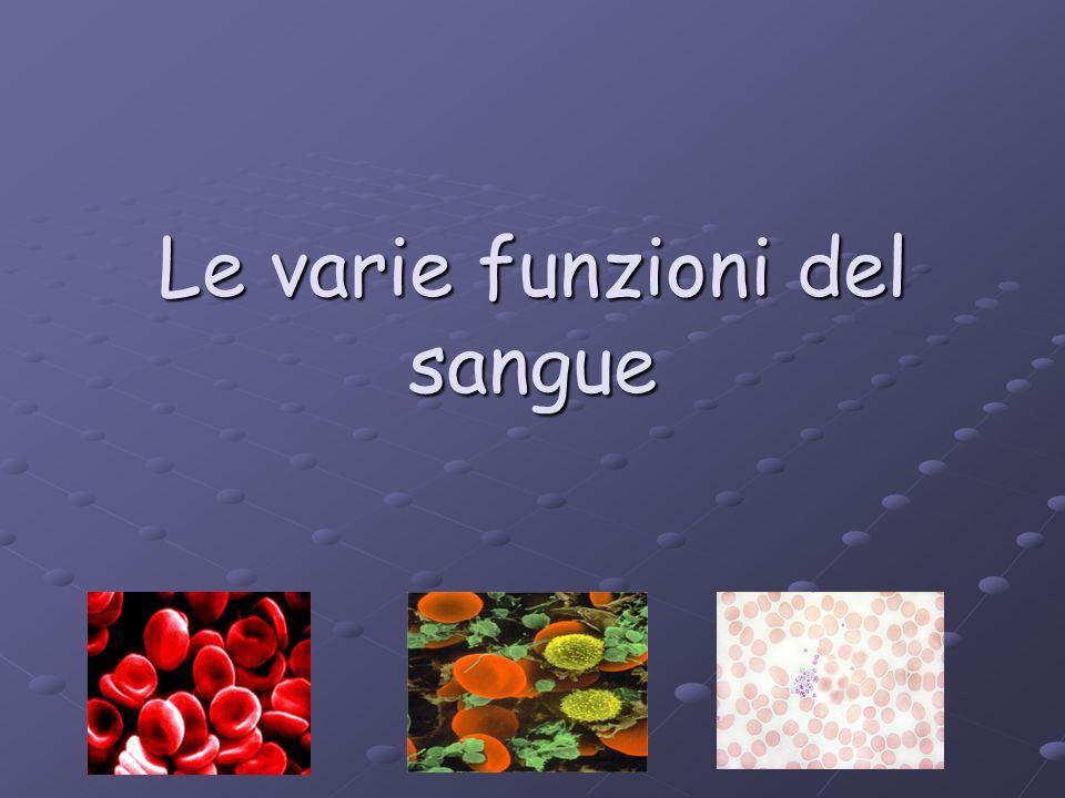 Le varie funzioni del sangue