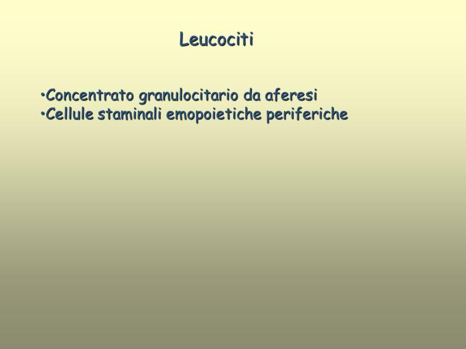 Leucociti Concentrato granulocitario da aferesi