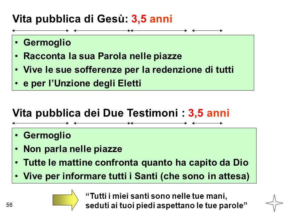 Vita pubblica di Gesù: 3,5 anni