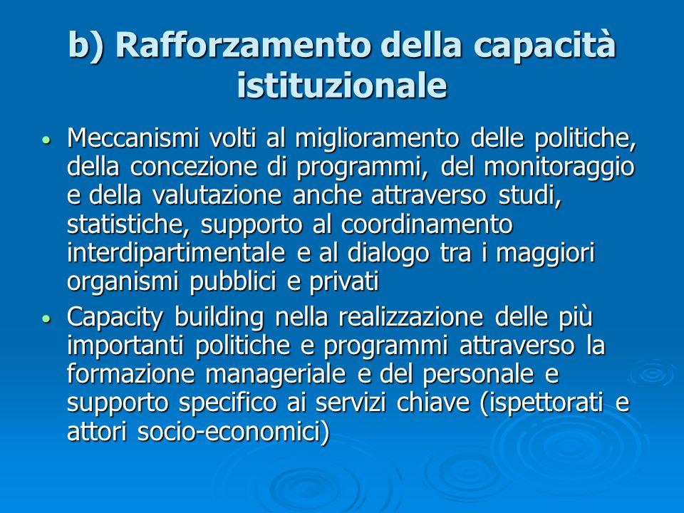 b) Rafforzamento della capacità istituzionale