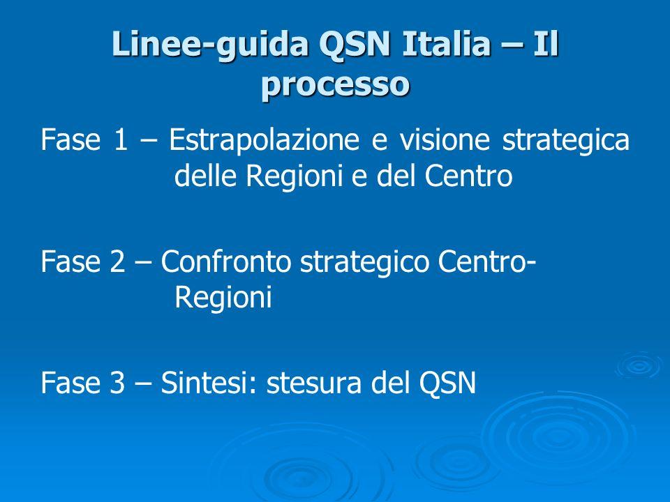 Linee-guida QSN Italia – Il processo