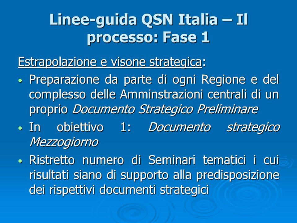 Linee-guida QSN Italia – Il processo: Fase 1