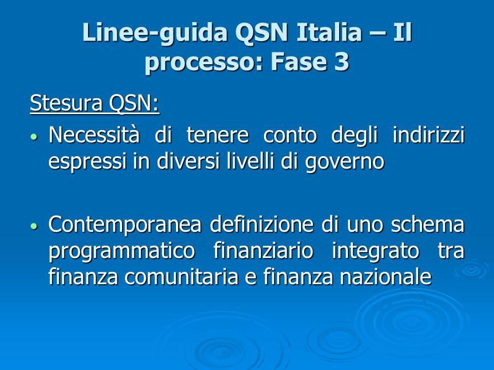 Linee-guida QSN Italia – Il processo: Fase 3