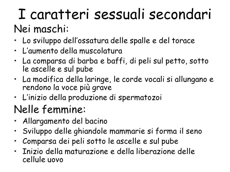 I caratteri sessuali secondari